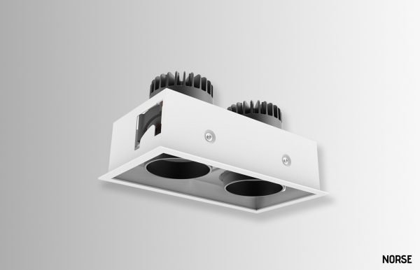 Darian square double gimble downlight