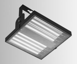 Hollie Series Flood Lights - Clear polycarbonate cover