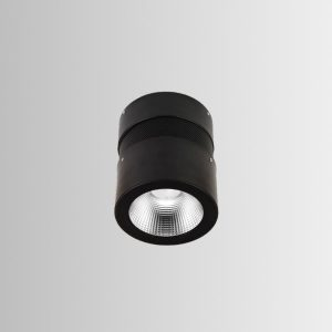 Tyra Round Downlight